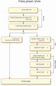 """תרשים של תהליך האבחון במת""""ל"""